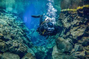 Droogpak duiker